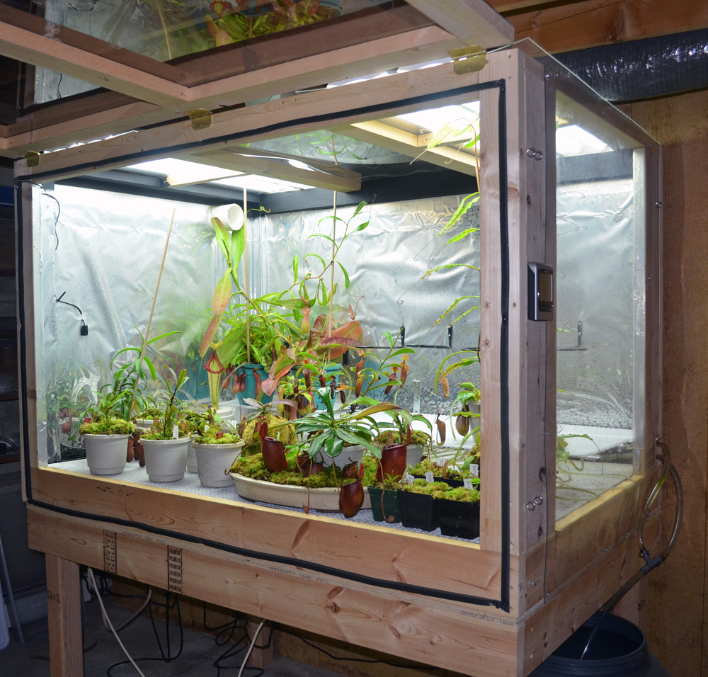 Introduction Amp Highland Setup Carnivorous Plants In The